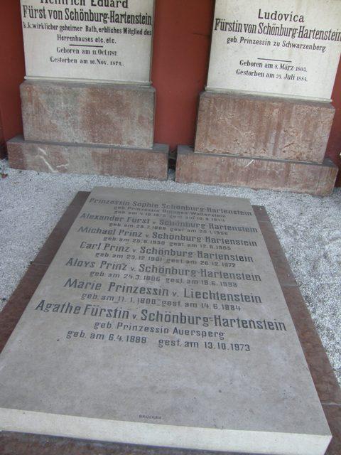 alexander von schonburg